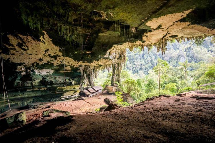 尼亚国家公园 (Niah Cave)